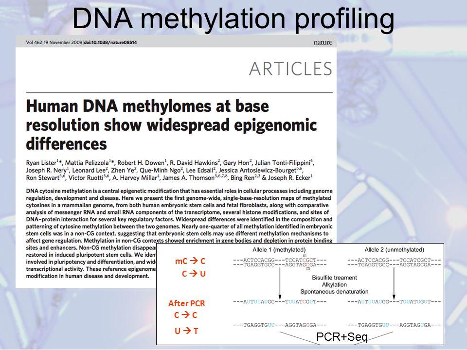 DNA methylation profiling