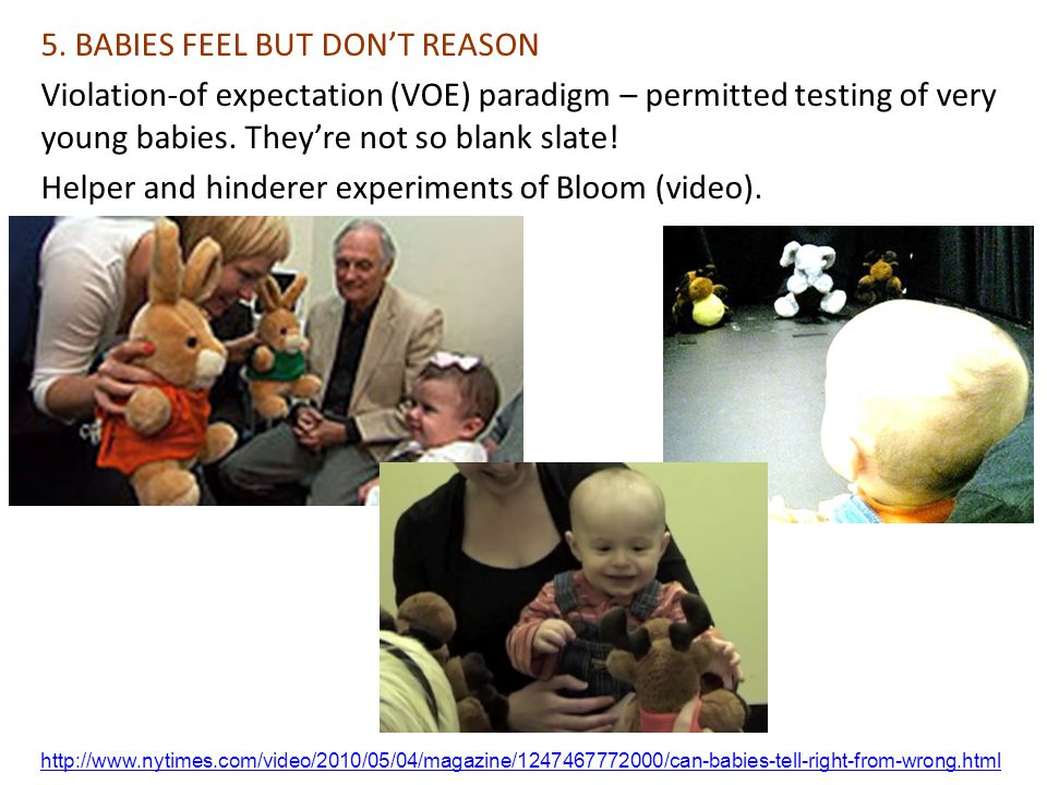 5. BABIES FEEL BUT DON'T REASON
