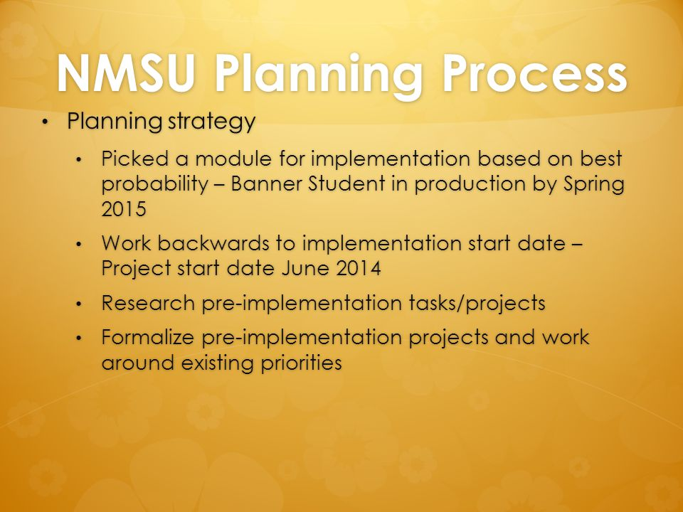 NMSU Planning Process Planning strategy