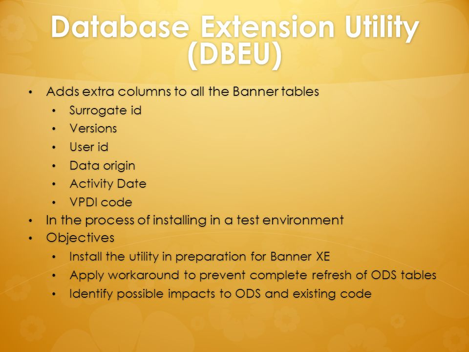 Database Extension Utility (DBEU)