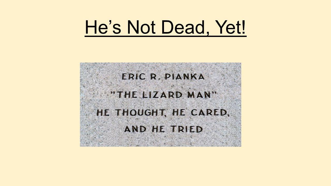 He's Not Dead, Yet!