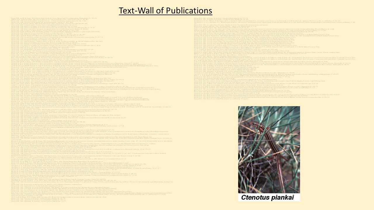 Text-Wall of Publications