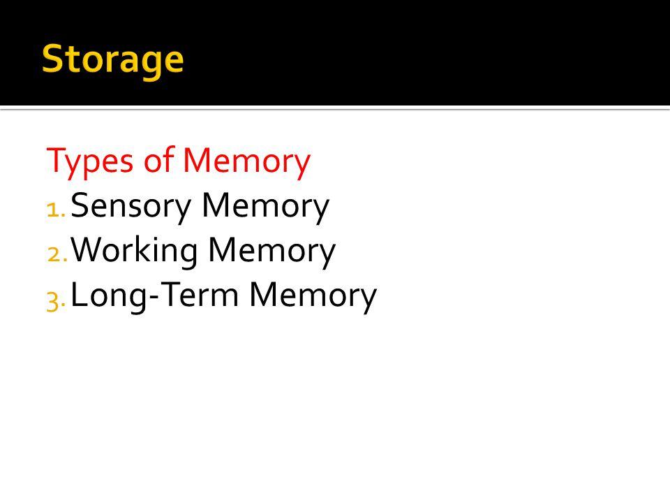 Storage Types of Memory Sensory Memory Working Memory Long-Term Memory