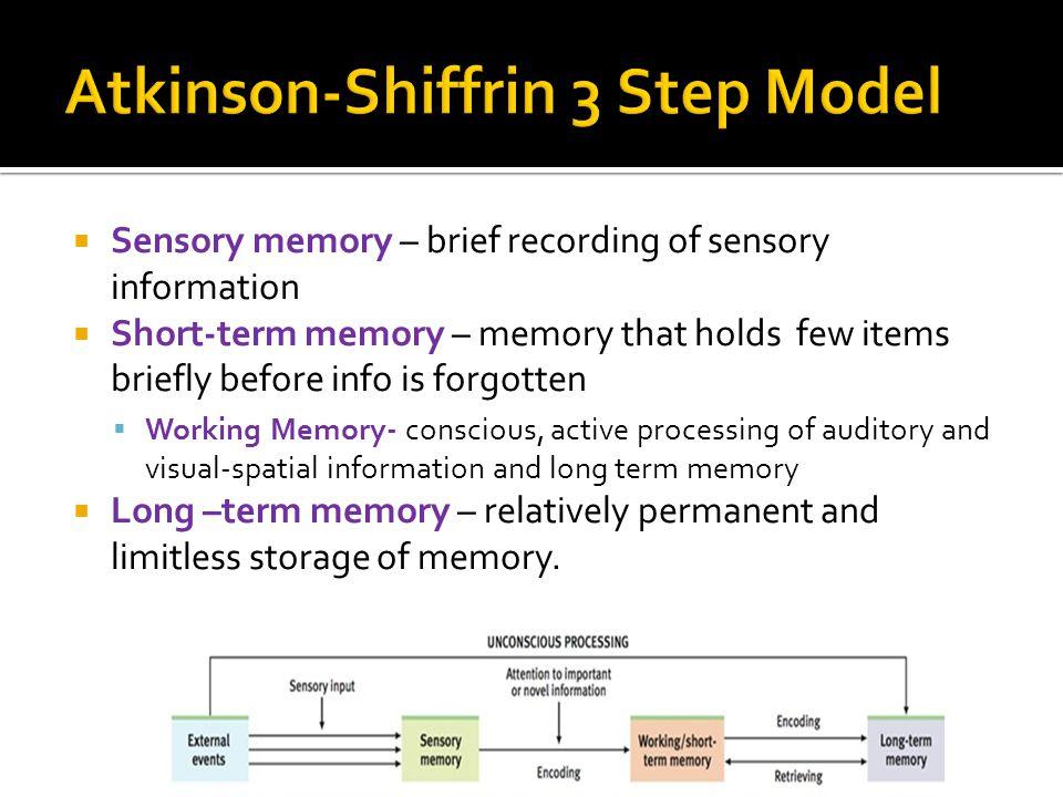 Atkinson-Shiffrin 3 Step Model