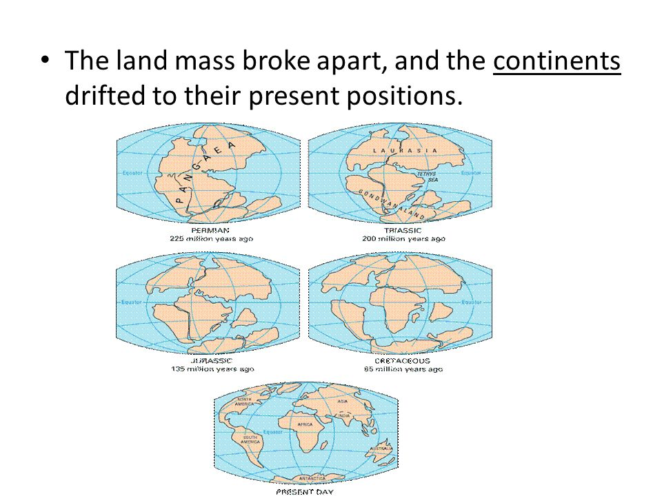 The land mass broke apart, and the continents drifted to their present positions.
