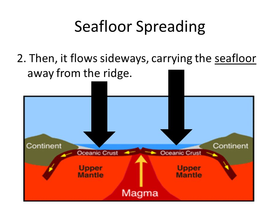 Seafloor Spreading 2. Then, it flows sideways, carrying the seafloor away from the ridge.