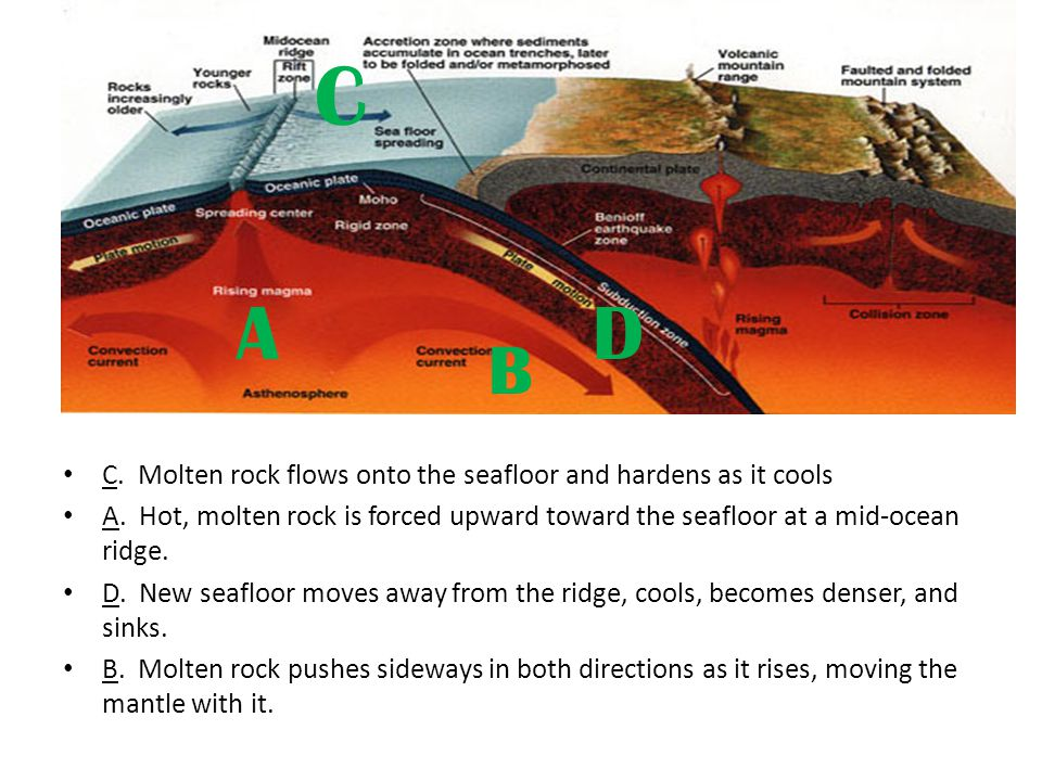 C A D B C. Molten rock flows onto the seafloor and hardens as it cools
