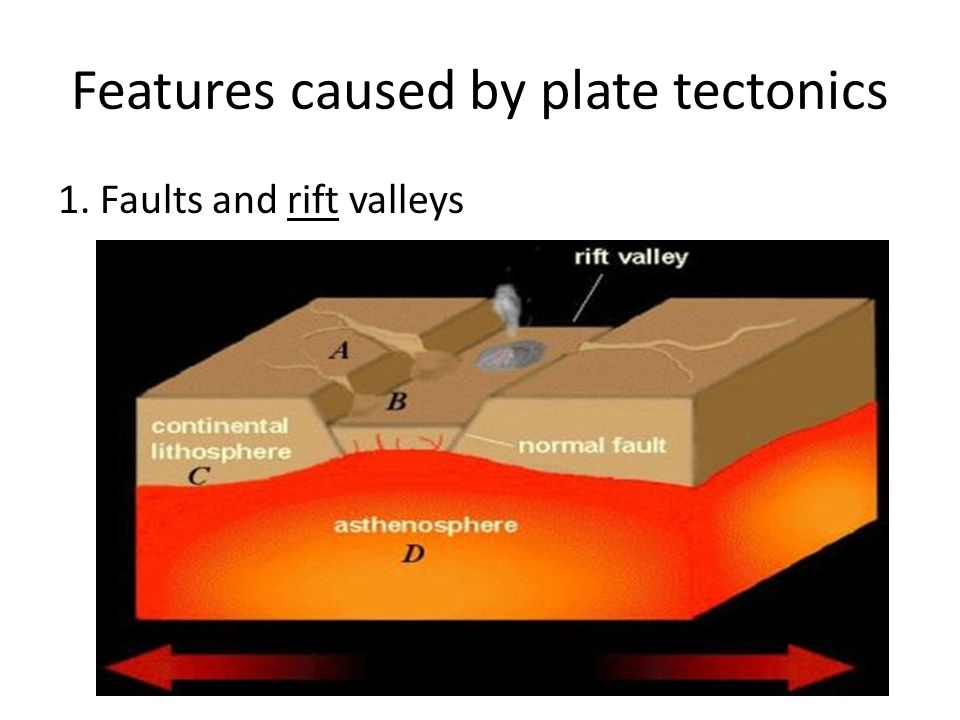 Features caused by plate tectonics