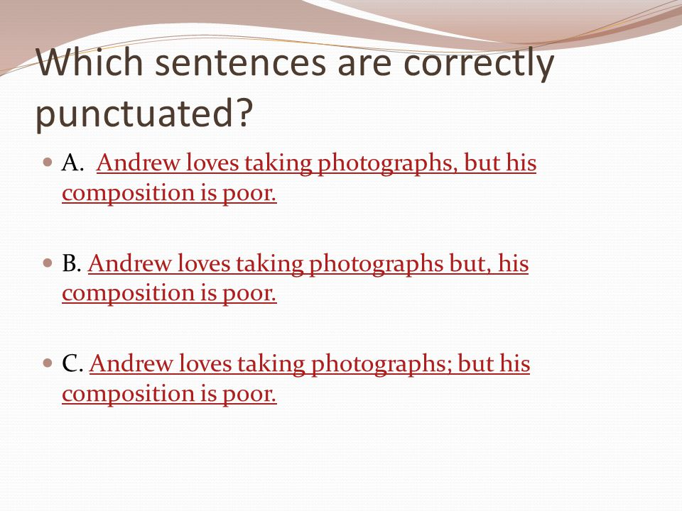 Which sentences are correctly punctuated