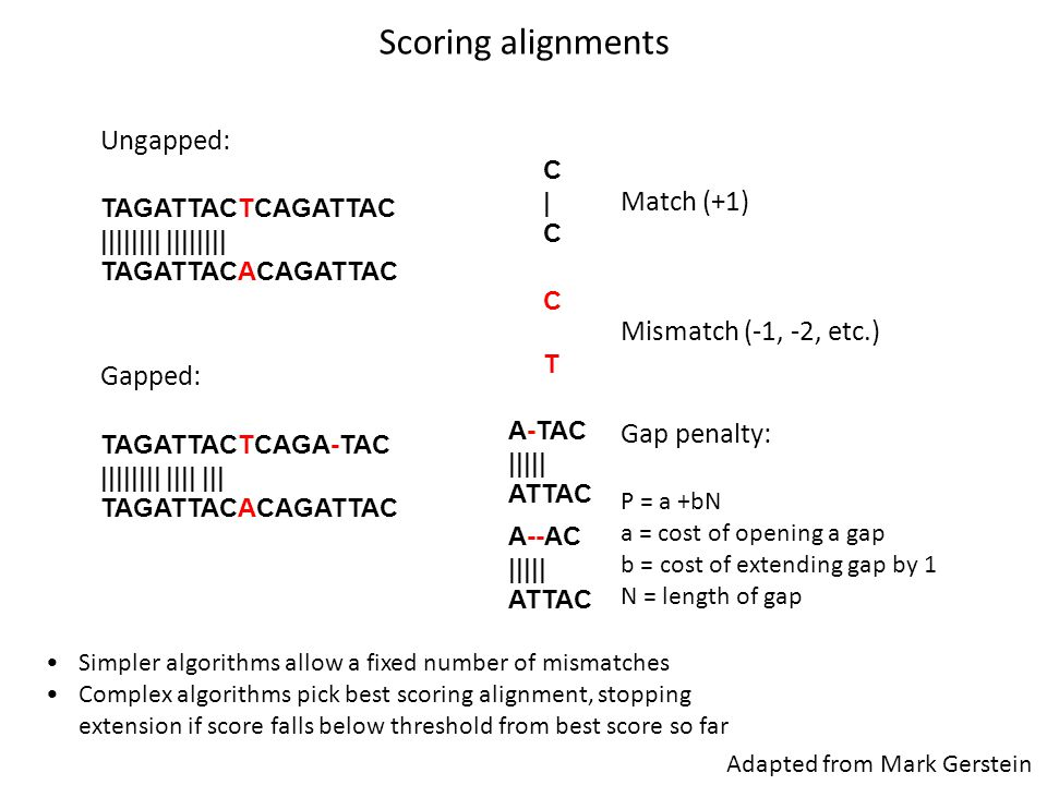 Scoring alignments Ungapped: Match (+1) Mismatch (-1, -2, etc.)