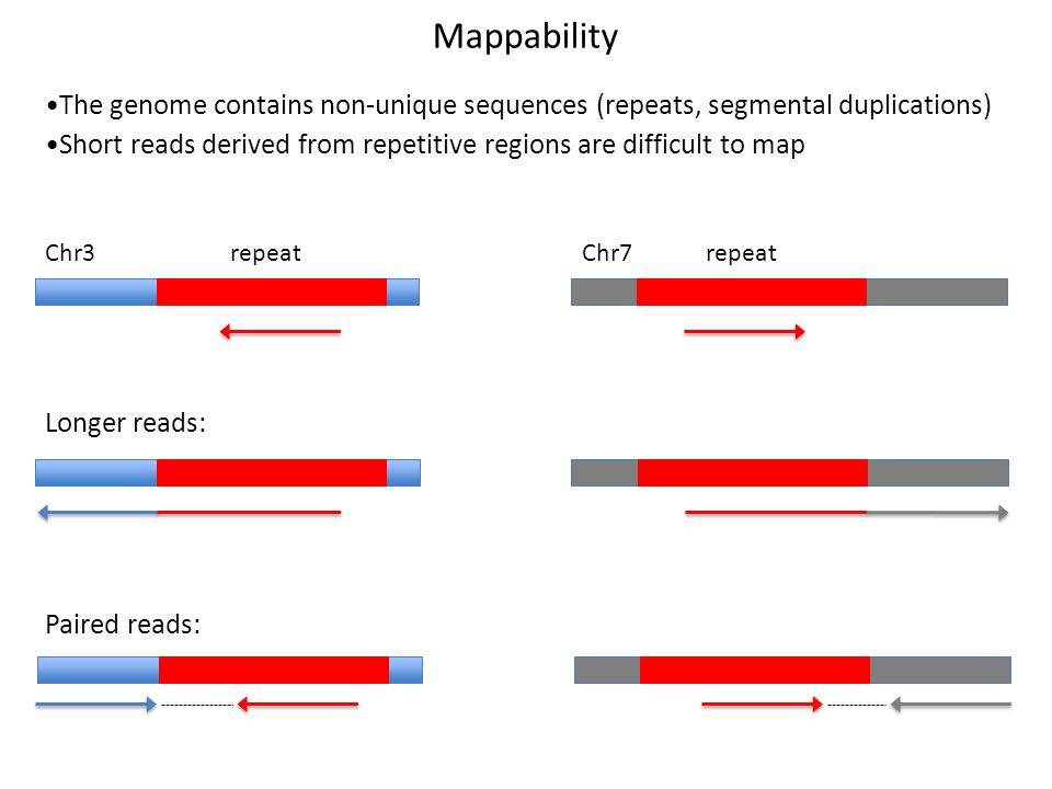 Mappability The genome contains non-unique sequences (repeats, segmental duplications)