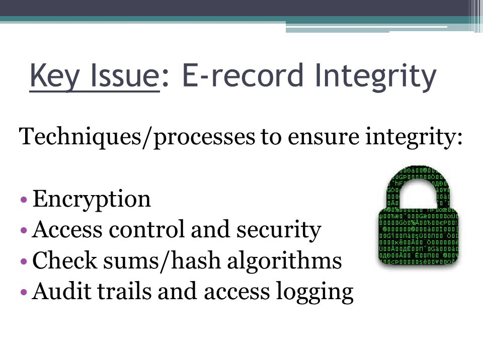 Key Issue: E-record Integrity