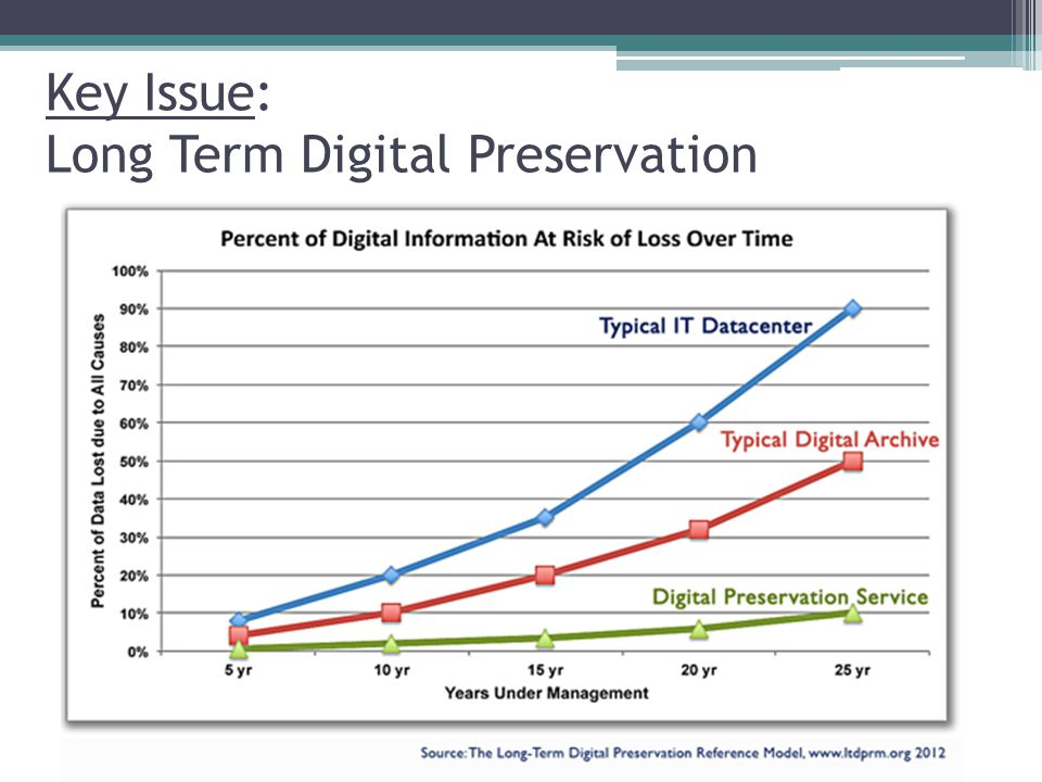 Key Issue: Long Term Digital Preservation