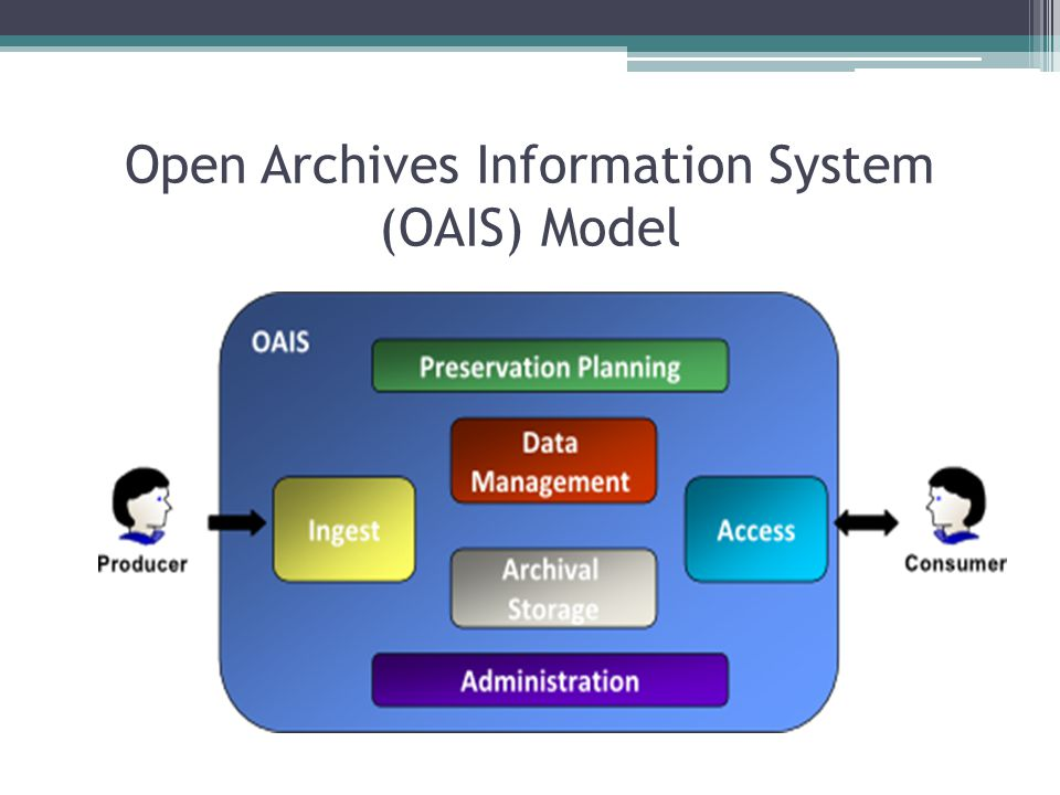 Open Archives Information System (OAIS) Model
