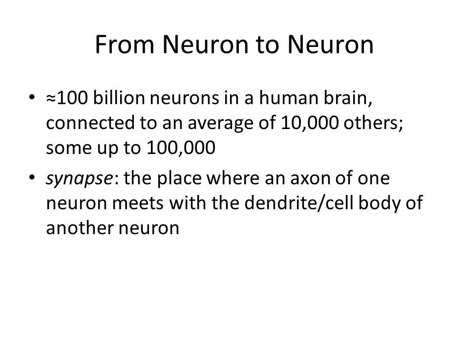 From Neuron to Neuron ≈100 billion neurons in a human brain, connected to an average of 10,000 others; some up to 100,000.