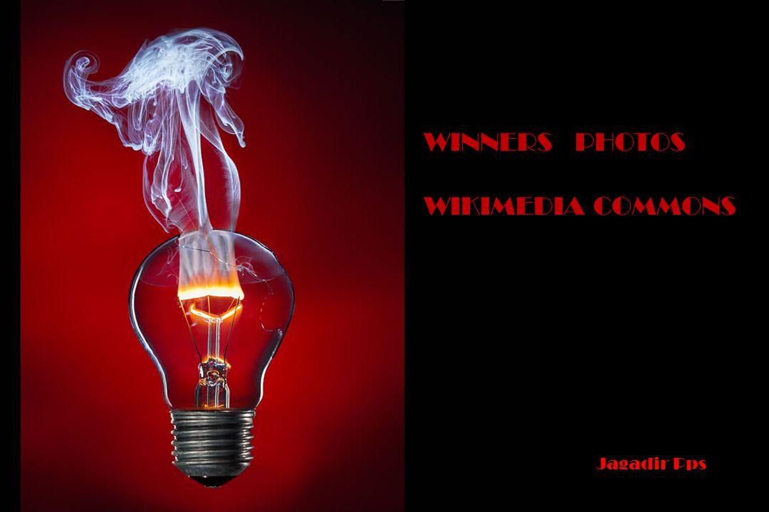 WINNERS PHOTOS WIKIMEDIA COMMONS Jagadir Pps