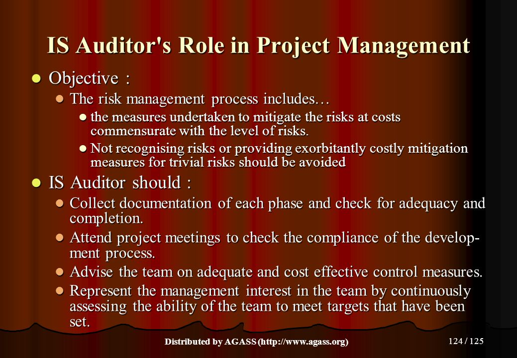 IS Auditor s Role in Project Management