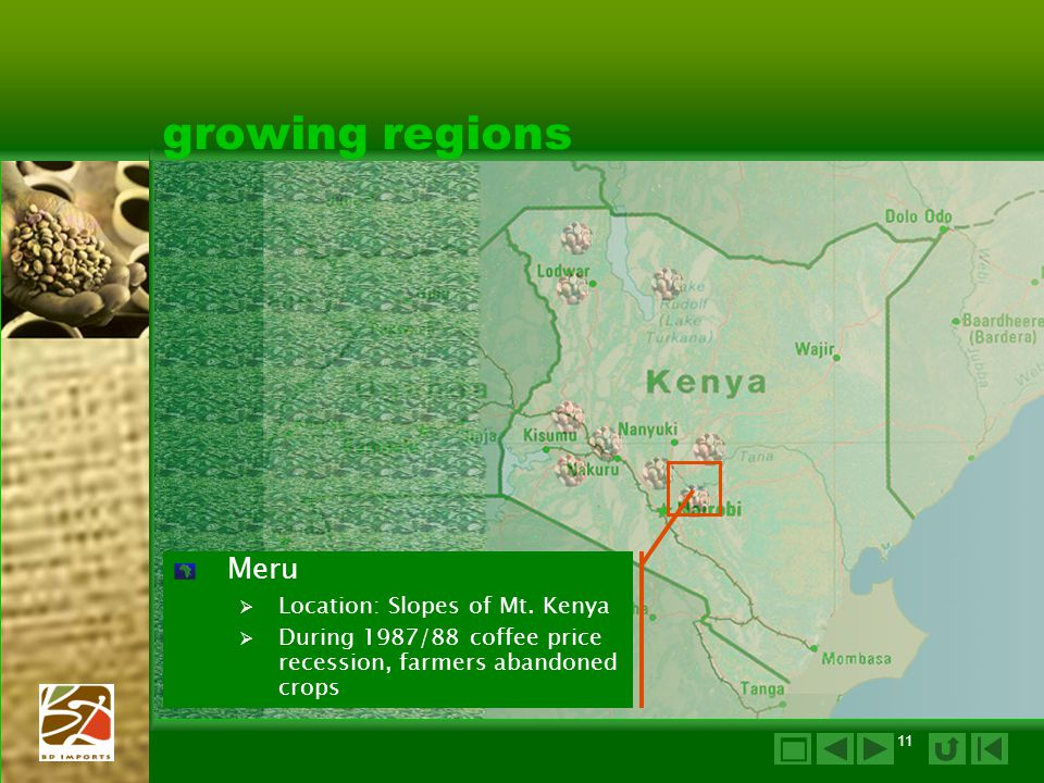 growing regions  Meru Location: Slopes of Mt. Kenya