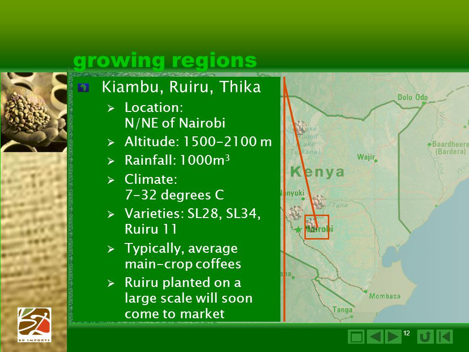 growing regions Kiambu, Ruiru, Thika  Location: N/NE of Nairobi