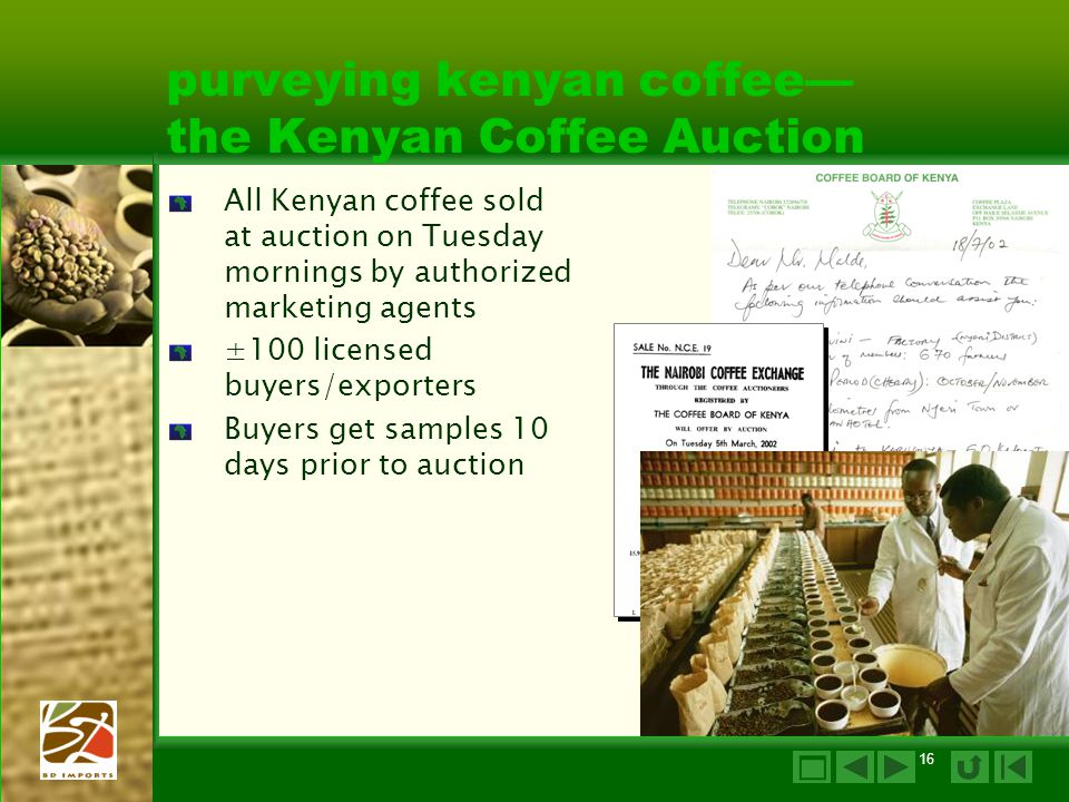 purveying kenyan coffee— the Kenyan Coffee Auction