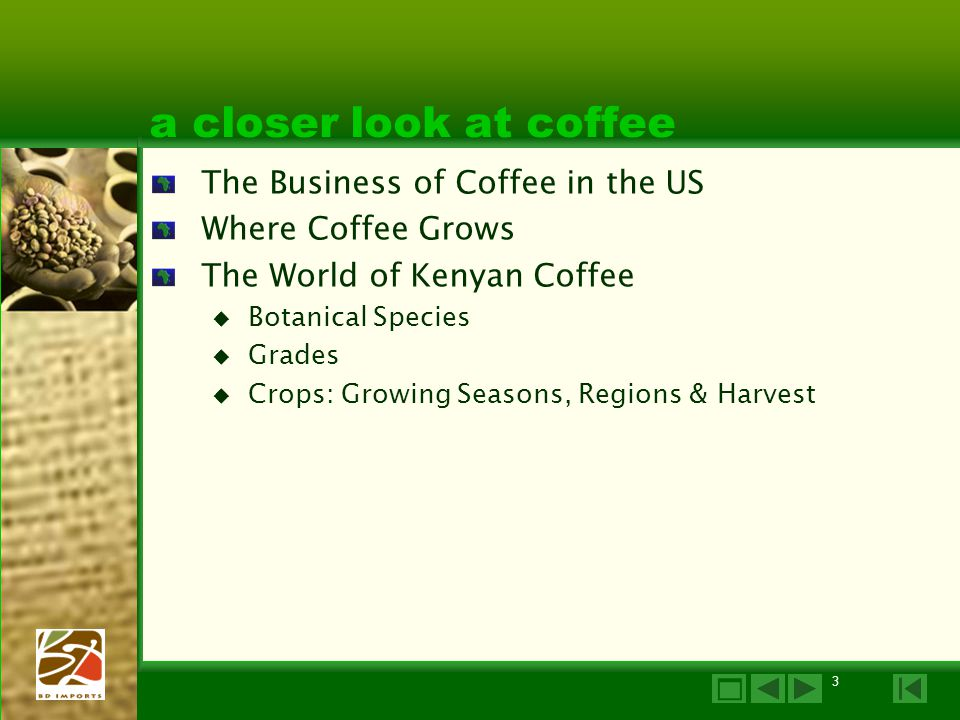 a closer look at coffee The Business of Coffee in the US