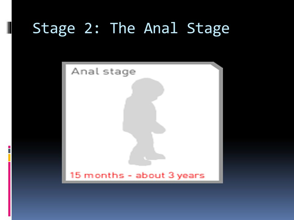 Stage 2: The Anal Stage