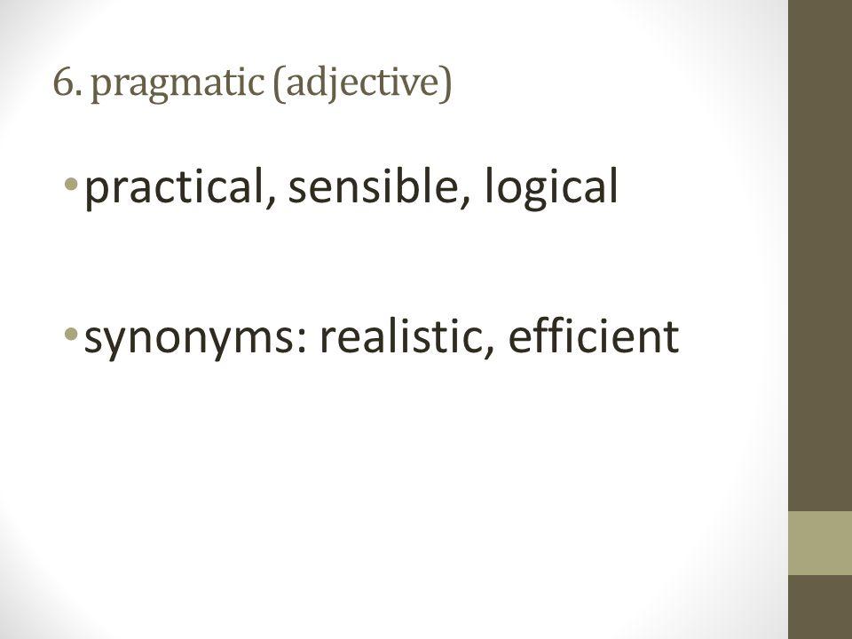 6. pragmatic (adjective)