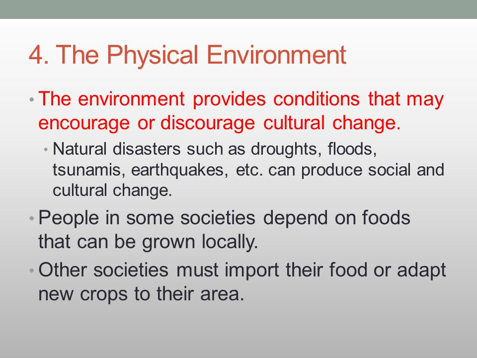 4. The Physical Environment