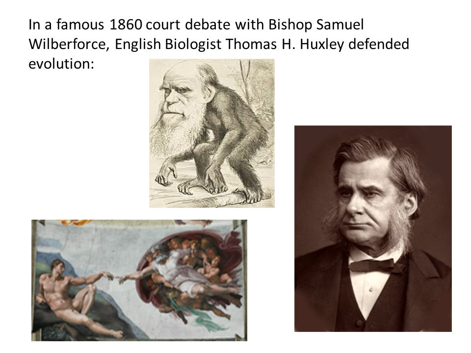 In a famous 1860 court debate with Bishop Samuel Wilberforce, English Biologist Thomas H.