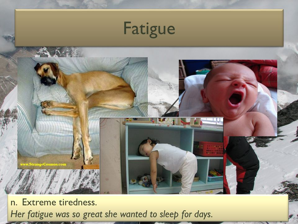 Fatigue n. Extreme tiredness.