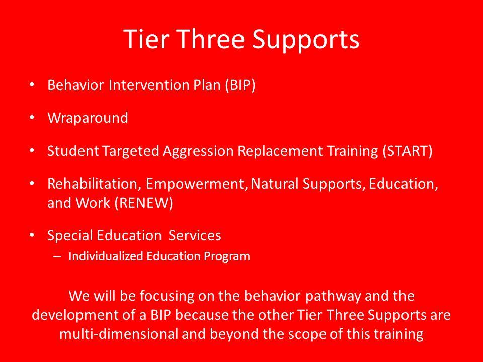 Tier Three Supports Behavior Intervention Plan (BIP) Wraparound