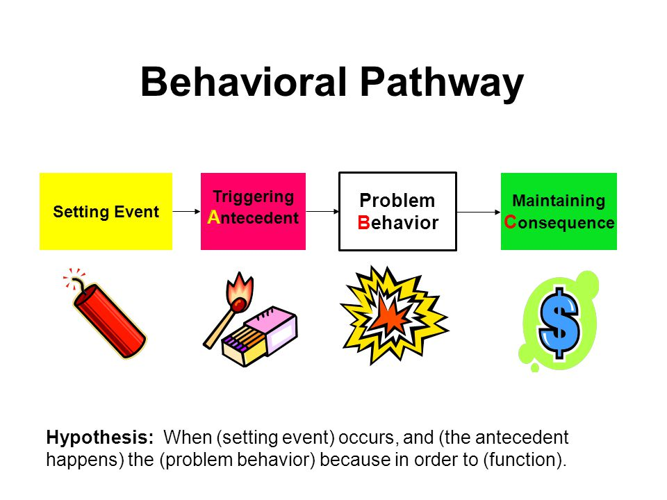 Behavioral Pathway Problem Behavior Antecedent Consequence