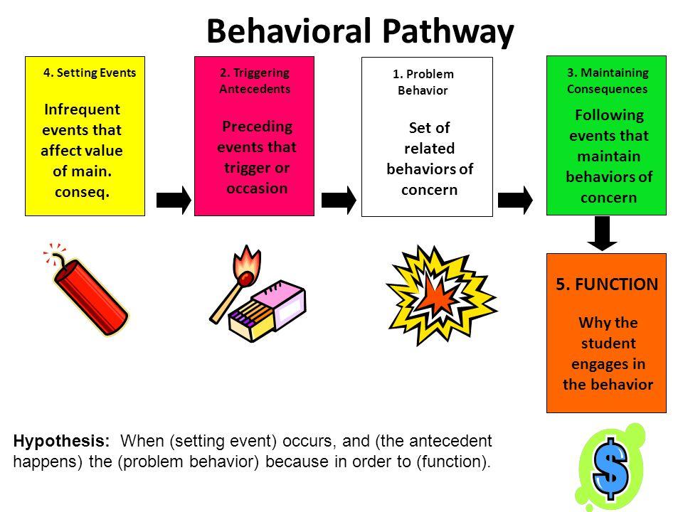 Behavioral Pathway 5. FUNCTION