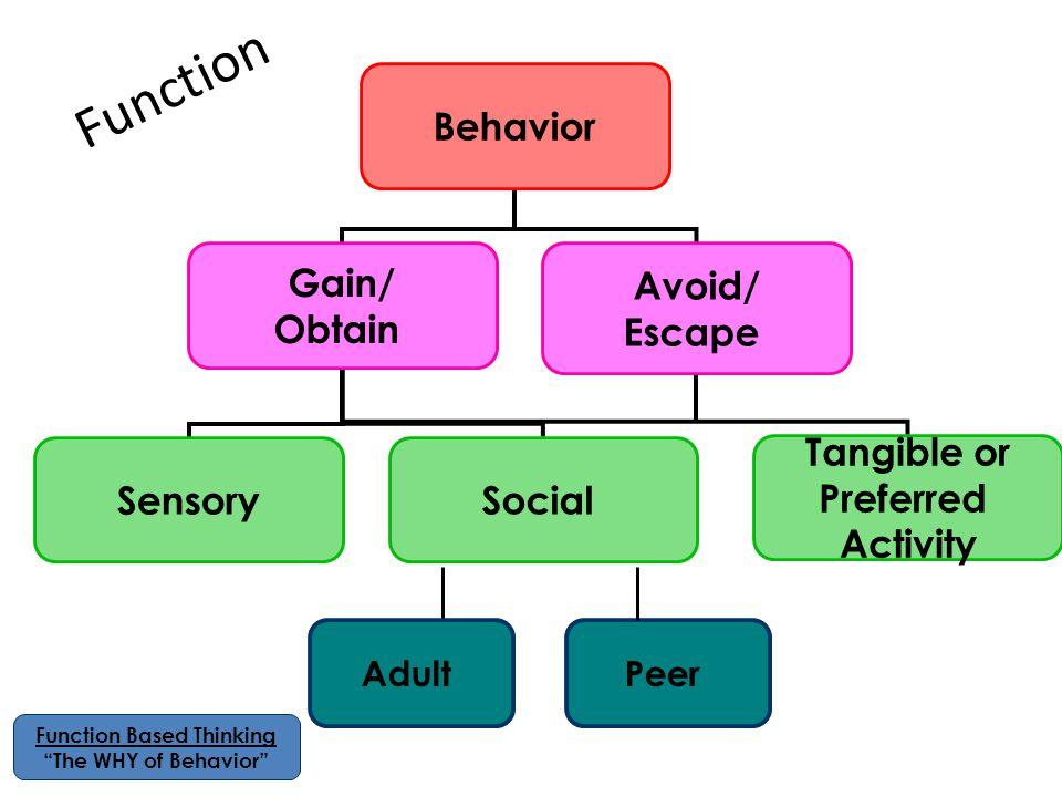 Function Based Thinking