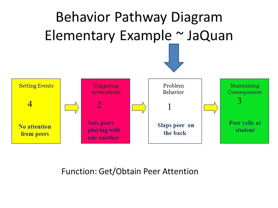 Behavior Pathway Diagram Elementary Example ~ JaQuan
