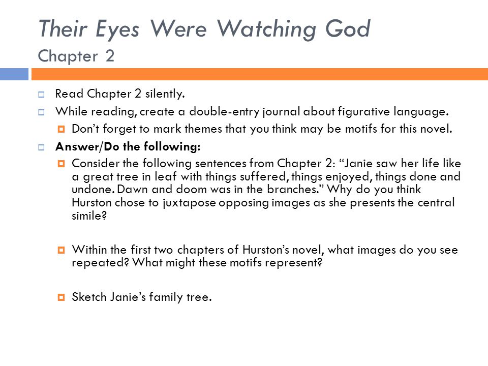 Their Eyes Were Watching God Chapter 2