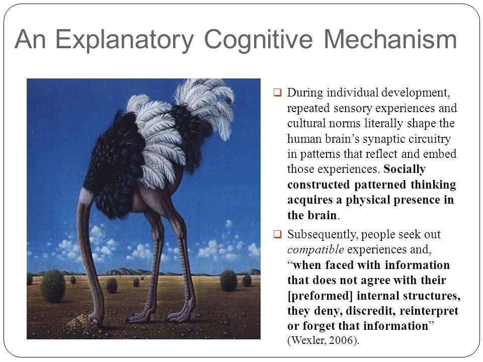 An Explanatory Cognitive Mechanism