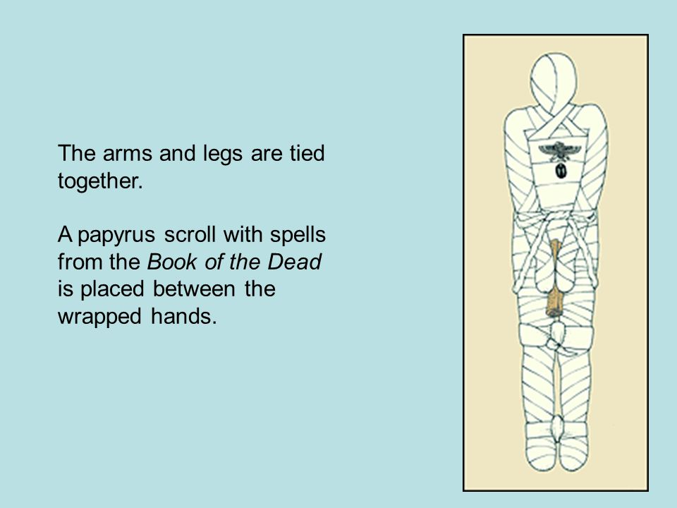 The arms and legs are tied together.