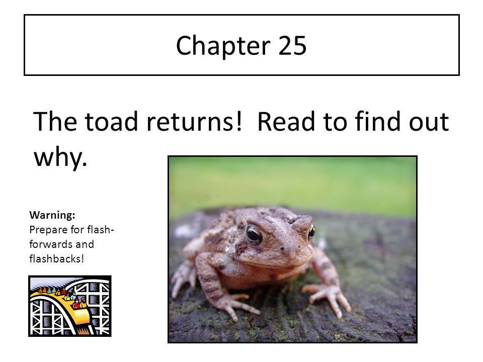 The toad returns! Read to find out why.