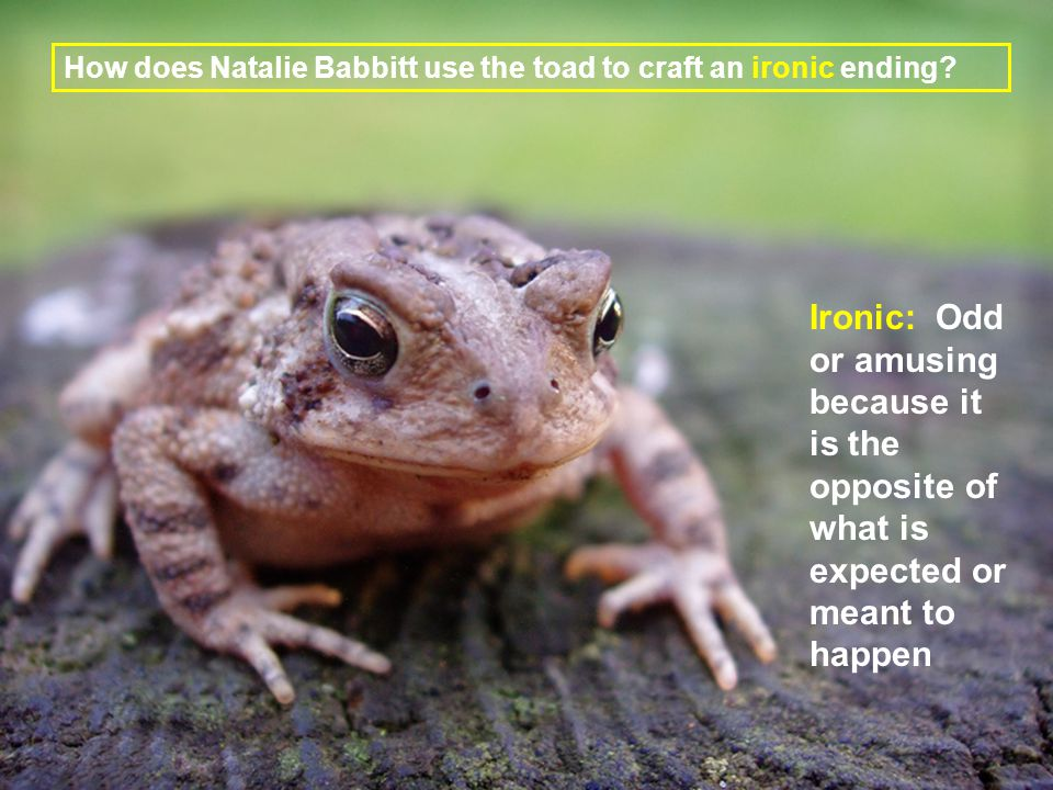 Chapter 3 How does Natalie Babbitt use the toad to craft an ironic ending