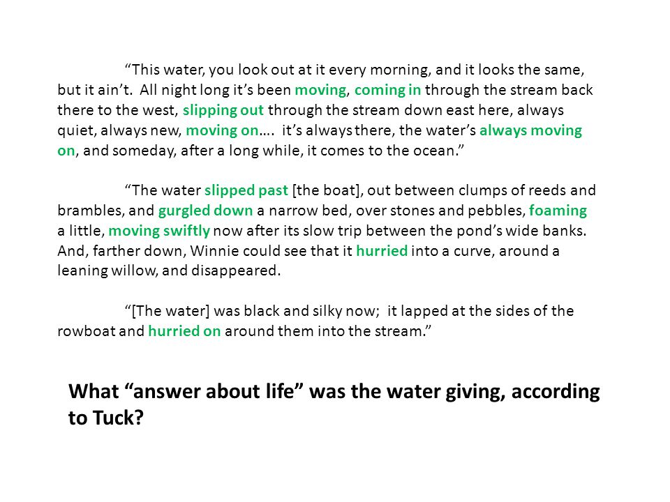 What answer about life was the water giving, according to Tuck