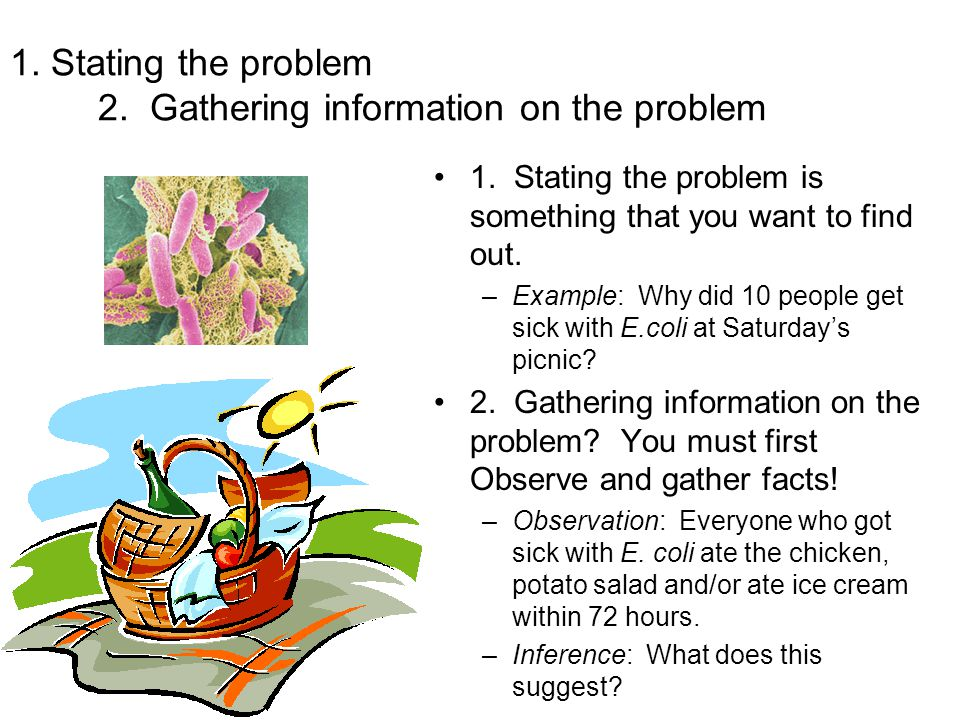 1. Stating the problem 2. Gathering information on the problem