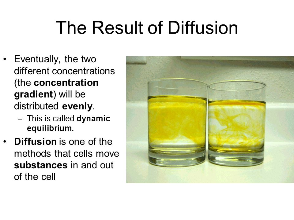 The Result of Diffusion
