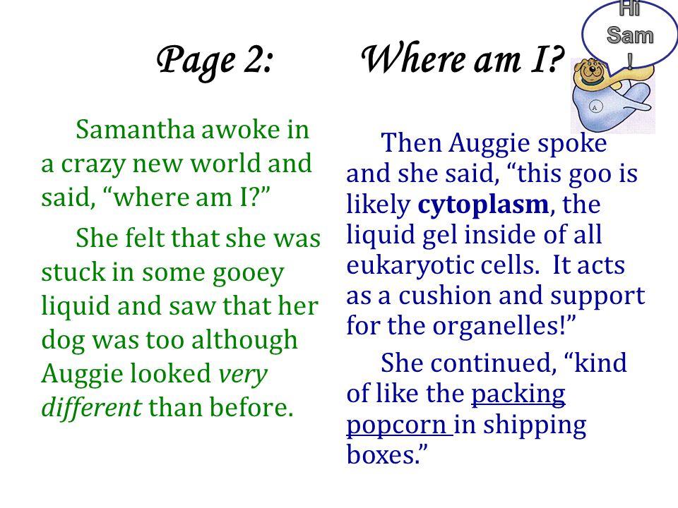 Hi Sam! Page 2: Where am I Samantha awoke in a crazy new world and said, where am I