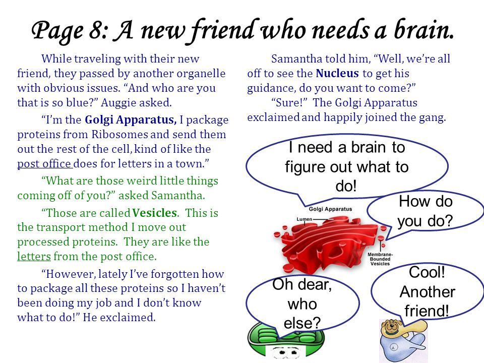 Page 8: A new friend who needs a brain.