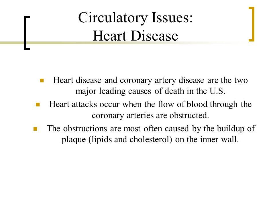 Circulatory Issues: Heart Disease