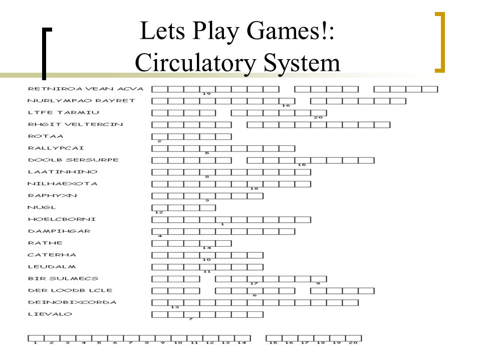 Lets Play Games!: Circulatory System