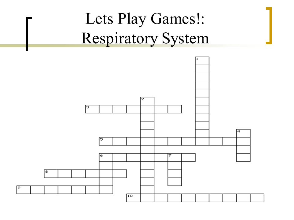 Lets Play Games!: Respiratory System