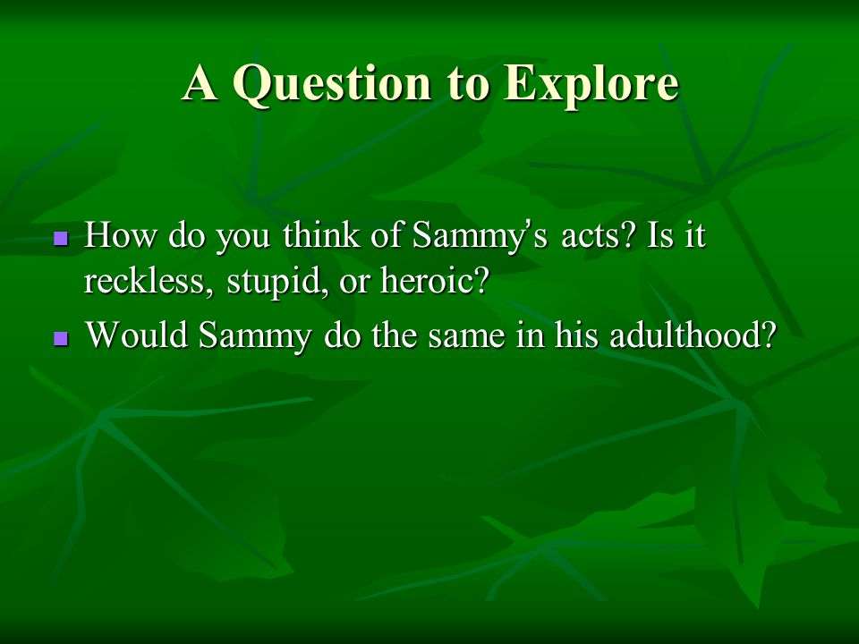 A Question to Explore How do you think of Sammy's acts.