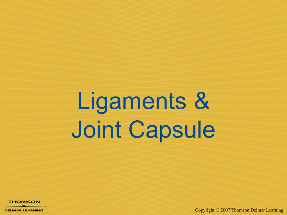 Ligaments & Joint Capsule